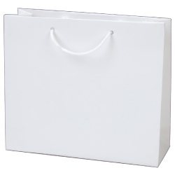 Laminated Paper Shopping Bags A3