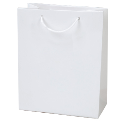 Laminated Paper Shopping Bags A4-V -264x136x327 mm