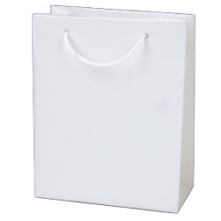 Laminated Paper Shopping Bags A5-V - 180x100x227 mm
