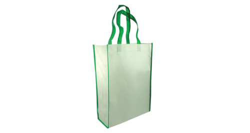 Non-Woven Reusable Bags Vertical - Green Color
