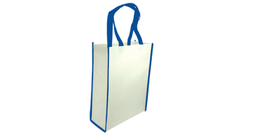 Non-Woven Reusable Bags Vertical - Blue Color