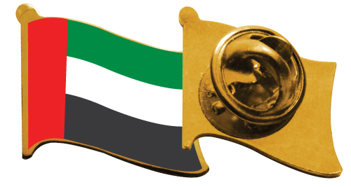 Gold Plated Flag Pins- 2092